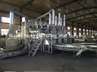 Walnut huller line / walnut processing line
